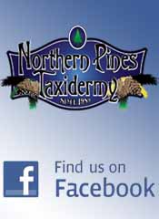 Northern Pines Taxidermy Facebook